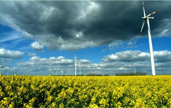 wind mills OC